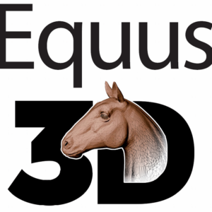 Video-Teaser Equus3D